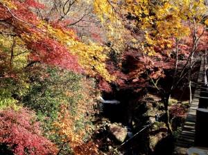 2汐見滝吊橋より汐見滝