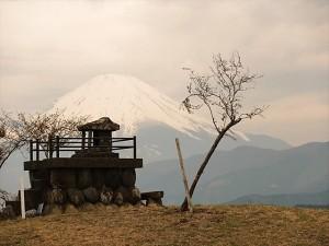 頂上から富士山