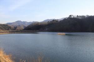 2365ougi-7(大野貯水池) R